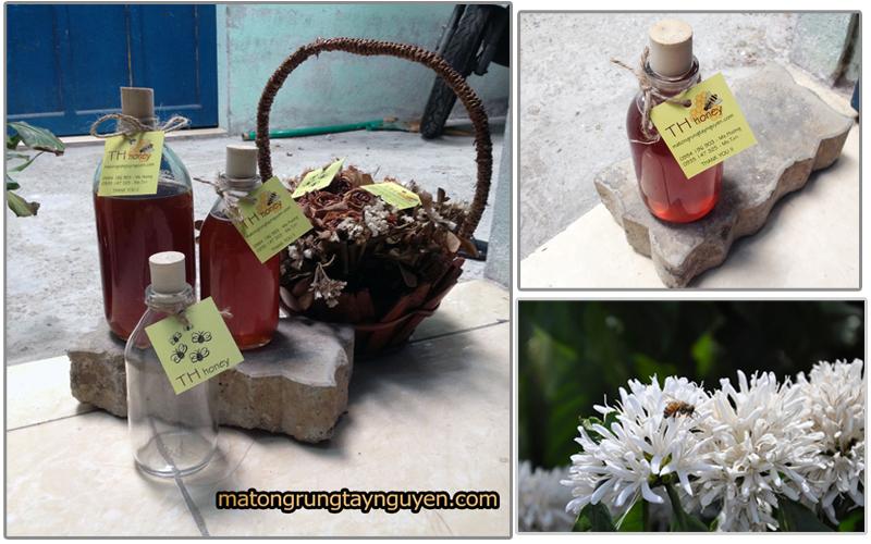 mat-ong-rung-nguyen-chat-tai-da-nang (5)